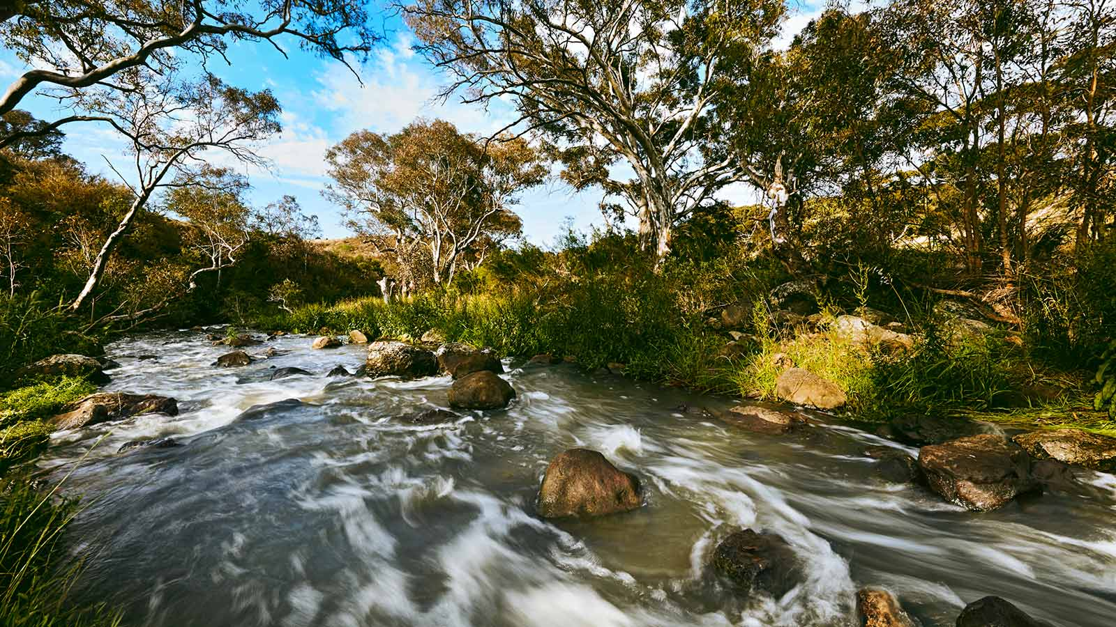 Redstone Jacksons Creek