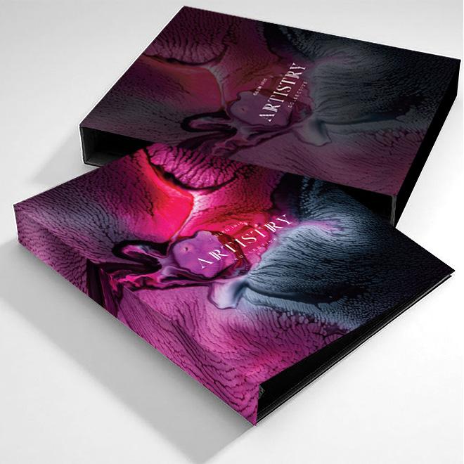 Vive Artistry folder